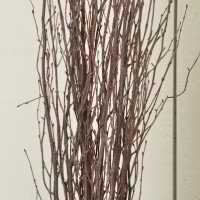 Decorative Birch Branches For Sale