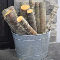 Red Alder Firewood Logs Loose - 6 Decorative Medium Logs