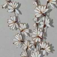Shola Peacock flowers - Dried