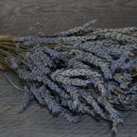 Dried Lavender Bunch Seconds - Grosso (French)