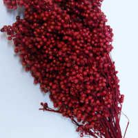 Dried Pepperberries - Pepper Berry