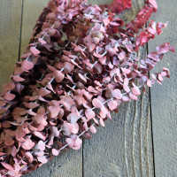 Preserved Eucalyptus Branches for sale - Red