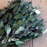Preserved Seeded Eucalyptus Branches - Greens