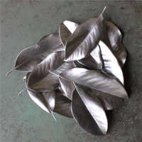 Painted Magnolia Leaves - Case