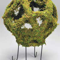 Moss Globe 18 inch with Stand