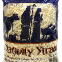 Real Craft Straw - Nativity Straw