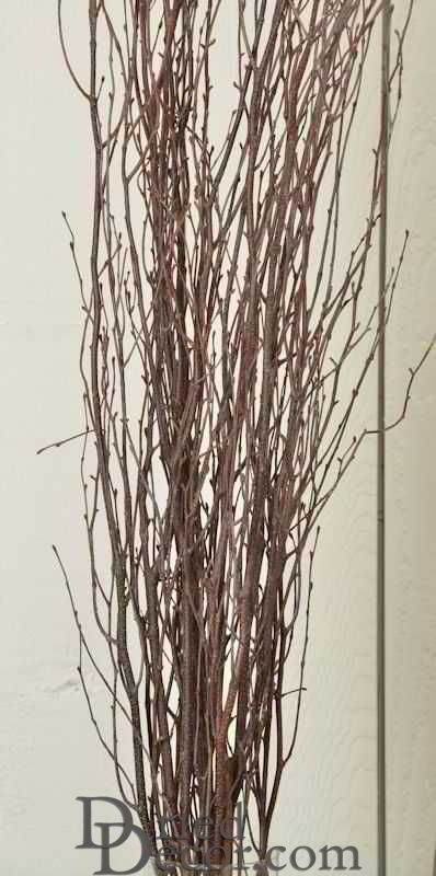 Decorative Birch Branches For Sale - Click Image to Close