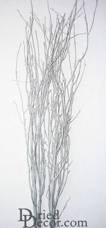 Silver Painted Birch Branches - Click Image to Close