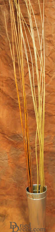 Long Willow Branches / Sticks - Click Image to Close