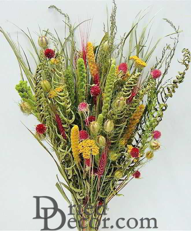 Dried Flower Bouquet - Painted Desert Bunch Dried Flower Bouquet ...