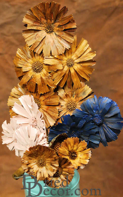 Dried Protea Flowers Stemmed - Click Image to Close
