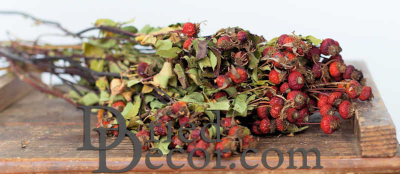 Dried Rose Hips - Click Image to Close