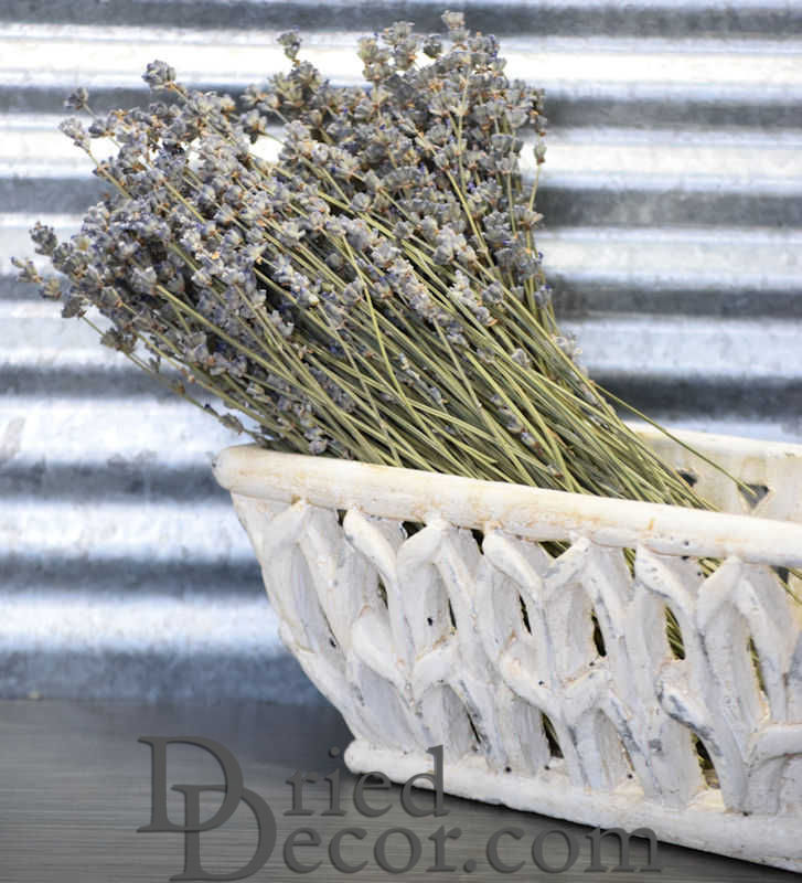 Dried English Lavender Bunch - Large Bundle - Royal Velvet - Click Image to Close