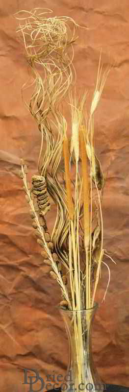 Dried Cattail Fall Bunch - Click Image to Close