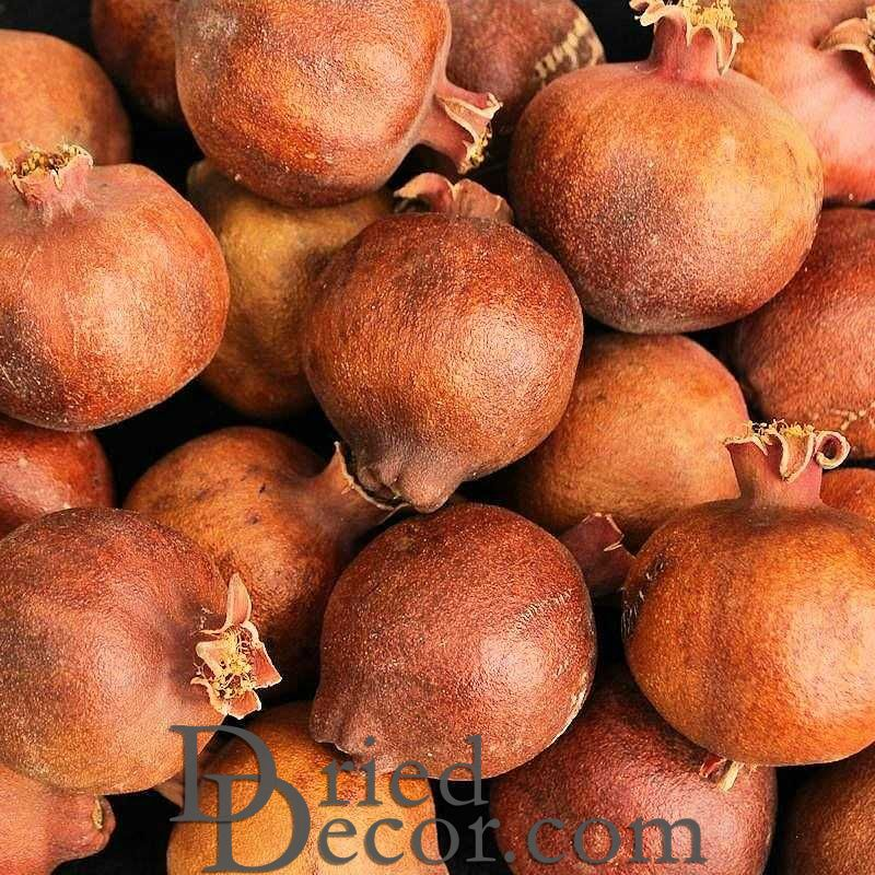 Dried Pomegranates Natural (Whole) - Click Image to Close