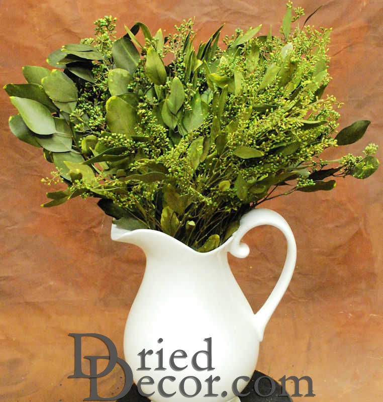 Preserved Seeded Eucalyptus Branches - Greens - Click Image to Close
