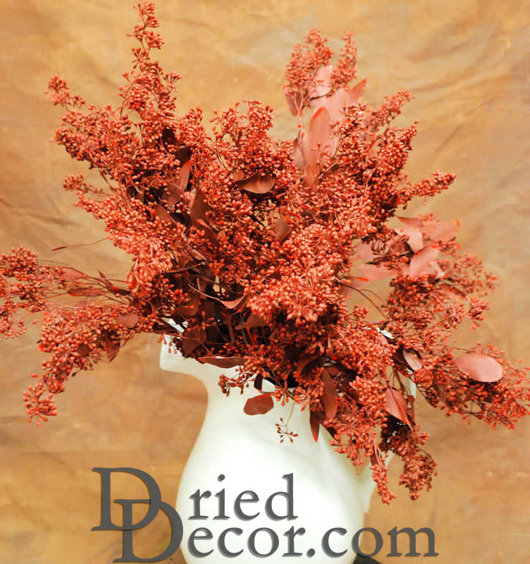 Preserved Seeded Eucalyptus Branches - Colors - Click Image to Close