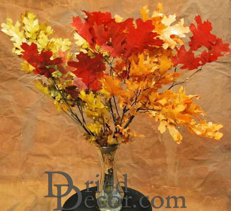Dried Fall Leaves On Branches Preserved Fall Leaf Boughs