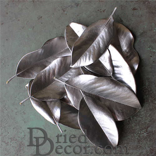 Painted Magnolia Leaves - Case - Click Image to Close