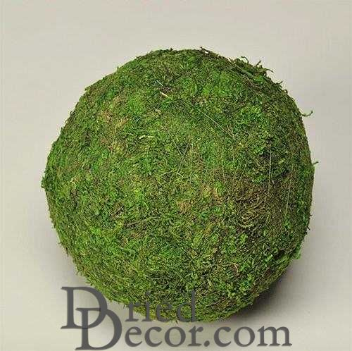 Dried Moss Balls - Preserved - 2,6,8 inch diameter - Click Image to Close