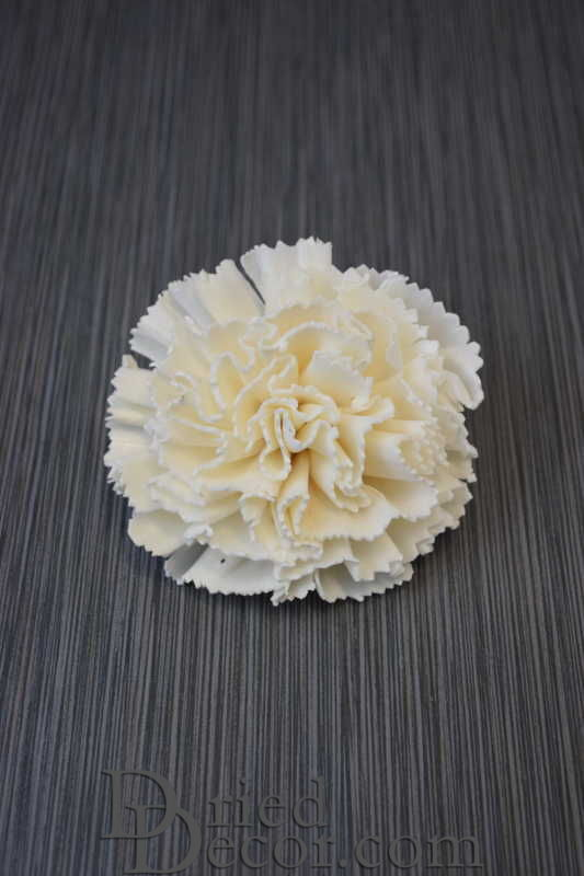 Sola Wood Carnation Flowers - Click Image to Close