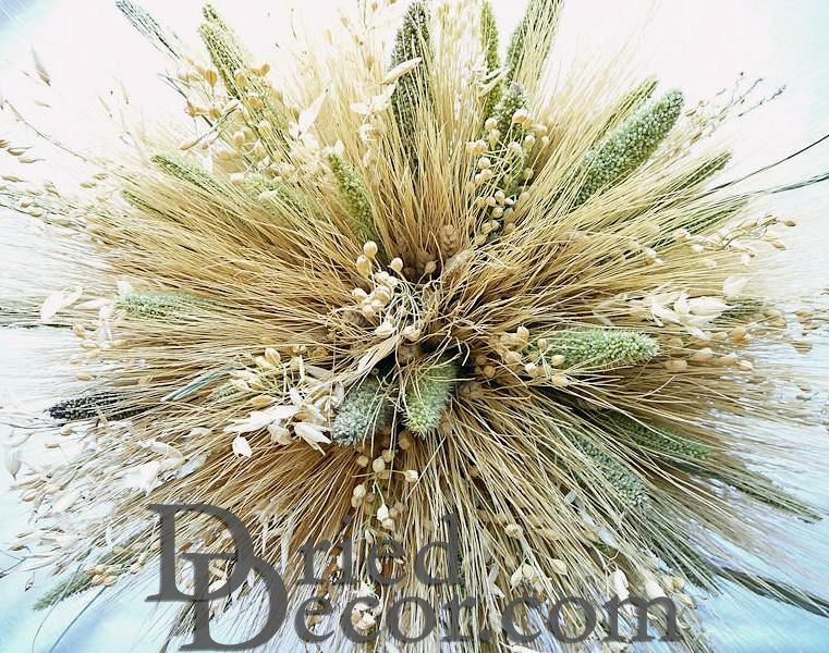 Mixed Grain Wheat Bundle - Click Image to Close