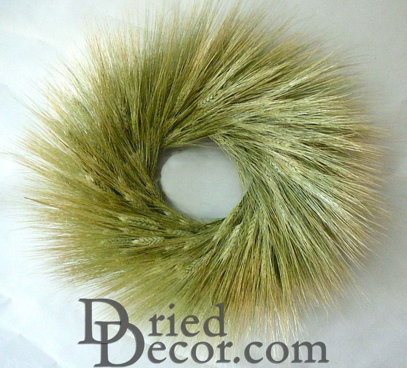 Bearded Green Wheat Wreath - 19 inch - Click Image to Close