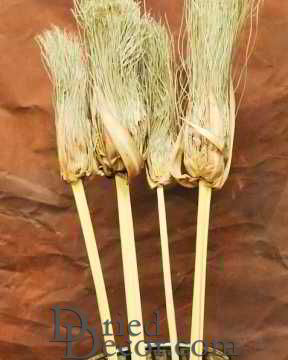 Dried Papyrus Brush Branches