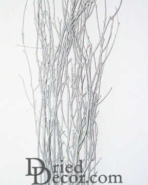 Silver Glittered Birch Branches