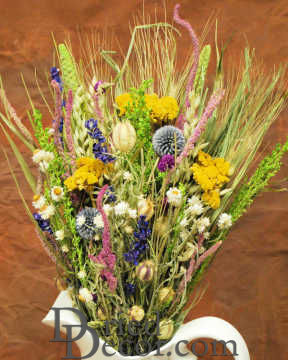 Dried Flower Bouquet - Summer Sizzle Bunch [DIS,009134050080]