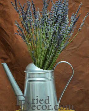 Super Blue Premium Scented French Lavender Bunch