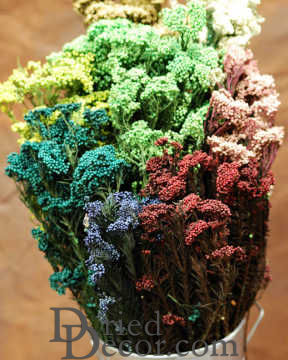 Dried Rice Flower Bunch