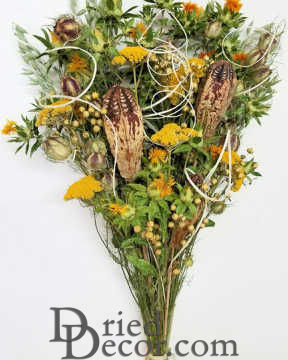 Dried Yellow Flower and