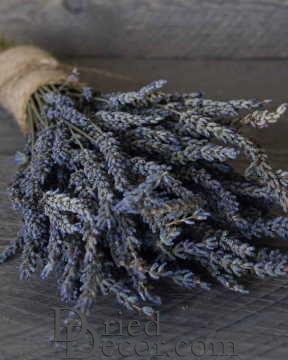 Dried Lavender Bunch - Grosso (French) [AF,HM,LJ,JL,009053196869]