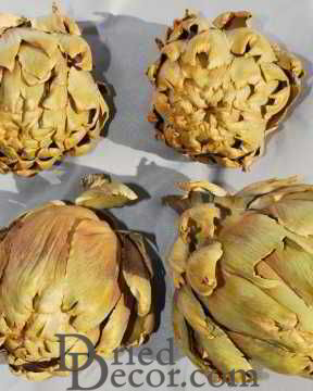 Dried Artichokes - Extra