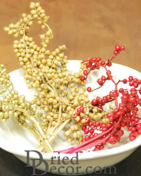Dried Canella Berries - Decorative Bunch