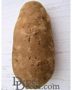 12 Idaho Potatoes