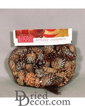 Mini Cinnamon Scented Pine Cones with Cinnamon Sticks