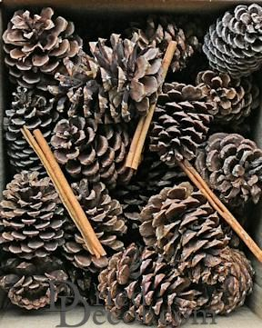 Ponderosa Pine Cones with Cinnamon