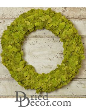 Dried Reindeer Moss Wreath - Green