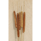 Dried Cattails Jumbo 30""