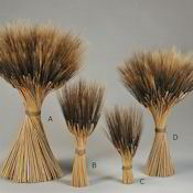Blackbeard Wheat Stacks, Small - Grande Size