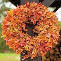 Dried Fall Oak Leaves Wreath Extra Large 26""